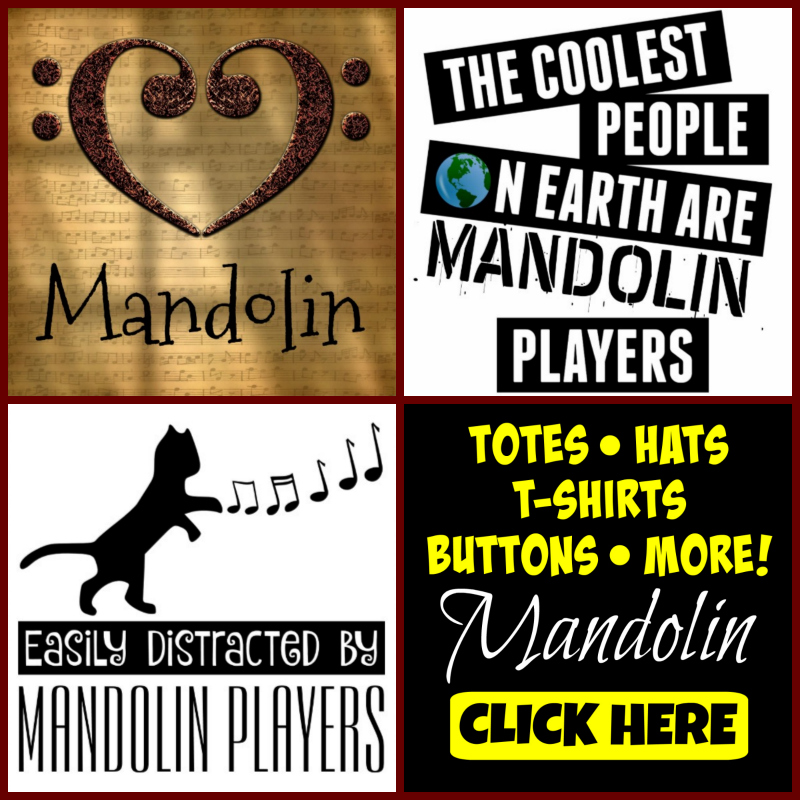 Mandolin Facts